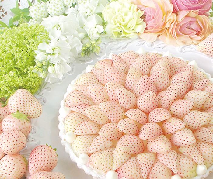 strawberry-week-white