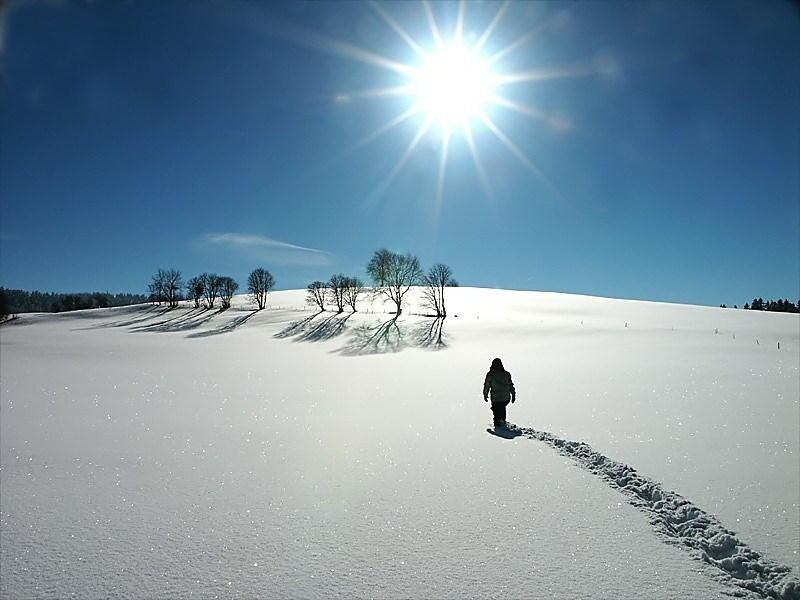 person-walking-snow