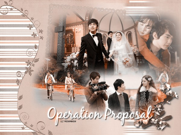 Operation-Proposal1-600x450