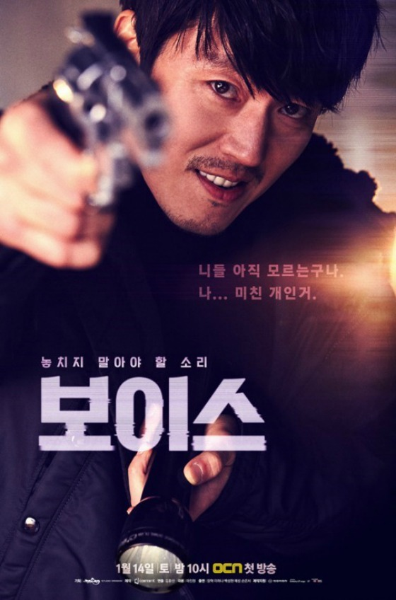 Voice-Poster2