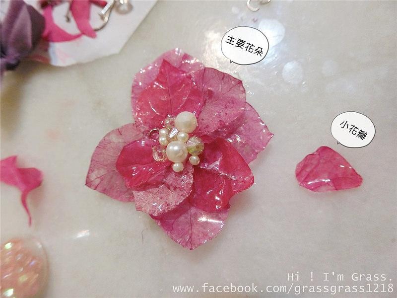 กลีบดอกไม้12