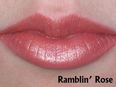 Ramblin-Rose