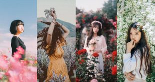 ถ่ายภาพคู่ดอกไม้