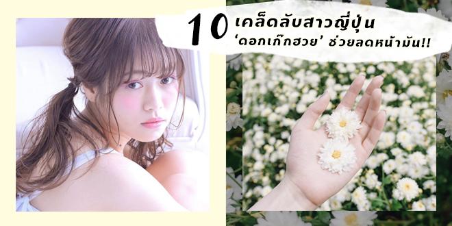 เคล็ดลับความงามของสาวญี่ปุ่น 'ดอกเก๊กฮวย' ช่วยให้หน้าไม่มันได้