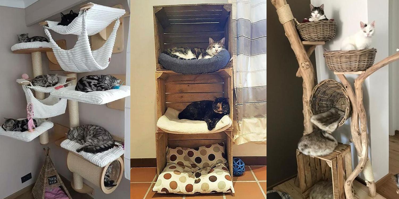25 ไอเดียที่นอนแมวบ้านน่ารัก แมวหลับสบาย