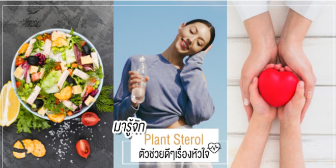 plant sterol คือ ช่วยลดระดับคอเลสเตอรอล