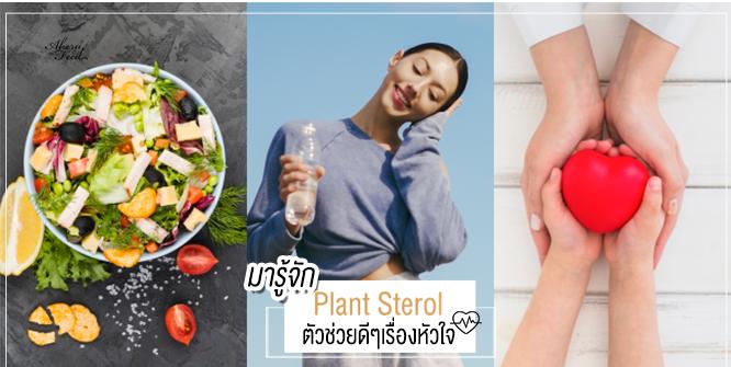 รู้จัก Plant Sterol ตัวช่วยลดระดับคอเลสเตอรอล ลดความเสี่ยงโรคหัวใจ