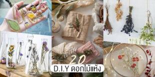 20 ไอเดีย D.I.Y ทำดอกไม้แห้ง ของตกแต่งบ้านก็ดี หรือเป็นของขวัญก็น่ารัก