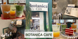 BOTANICA CAFE คาเฟ่สไตล์วินเทจ พร้อมมุมถ่ายรูปสวยๆ