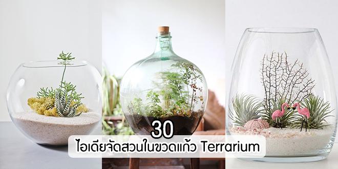 30-ไอเดียจัดสวนในขวดแก้ว